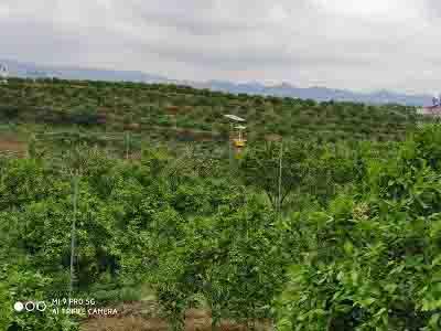宿迁实惠的农产品信息网推广