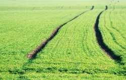 衡水正规的有机农业企业