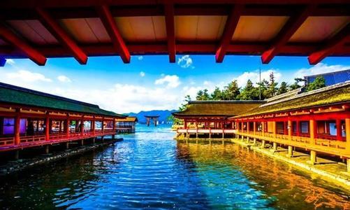 芜湖价格低的旅游公司哪家好