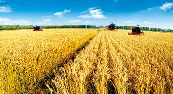 衢州优良的农业选哪家