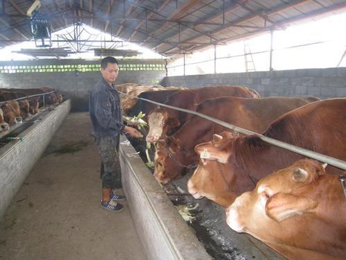 北京有名气的畜牧养殖怎么样